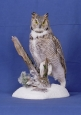 Owl- Great Horned 05
